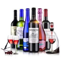 法国进口红酒 干红起泡酒白葡萄酒 6支装整箱组合 送醒酒器+酒杯 750ml*6